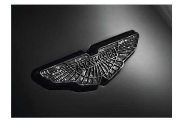 Carbon Fibre Wings Badge